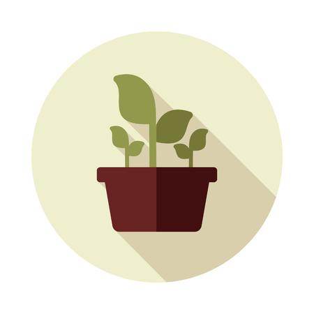Plant in pot flat icon outline isolated, garden, flowerpot. Vector Illustration, eps 10