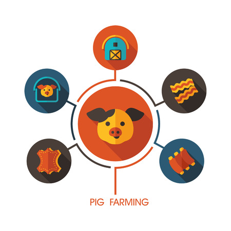 Pig farming icon and agriculture infographics. Farm sign graph symbol for your web site design, app, user interface vector illustration. Ilustracja