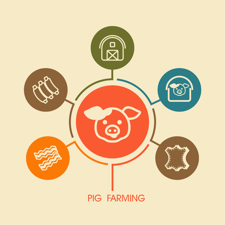 Pig farming icon and agriculture infographics. Farm sign. Graph symbol for your web site design, logo, app, UI. Vector illustration