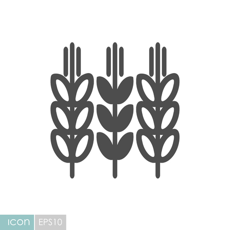 Spikelets and grains of wheat icon. Agriculture sign. Illustration