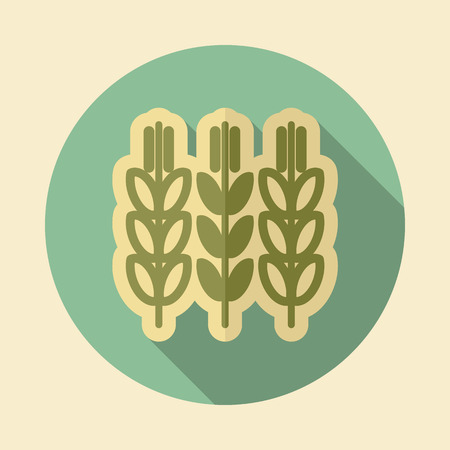 Spikelets and grains of wheat icon. Agriculture sign. Graph symbol for your web site design