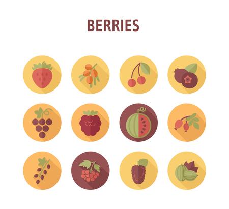 Conjunto de iconos de bayas frescas. Ilustración vectorial para aplicaciones de alimentos y sitios web.
