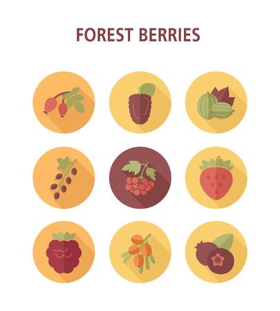 Waldbeeren-Symbole gesetzt. Vektorillustration für Lebensmittel-Apps und -Websites