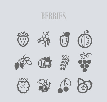 Fresh Berries icons set. Vector illustration for food apps and websites