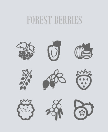 Forest berries icons set. Vector illustration for food apps and websites