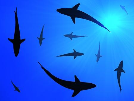 Sharks background Stok Fotoğraf