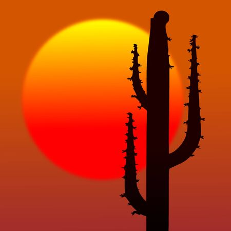 Desert sunset with cactus silhouette and sun  photo