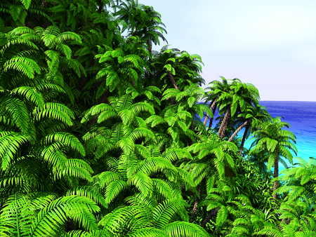 Tropical palm trees and ocean Stok Fotoğraf