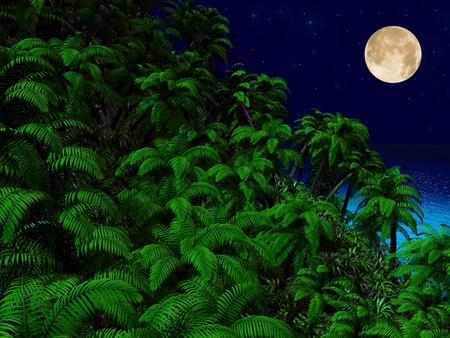 Tropische palmbomen en de oceaan 's nachts