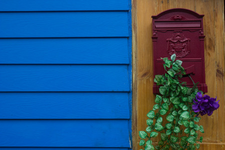 red mailbox with violet flower and green leaf near blue wall photo
