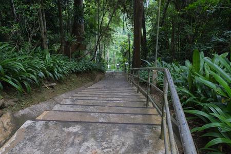 en mont�e: l'escalier sur la montagne pour aller vers le haut