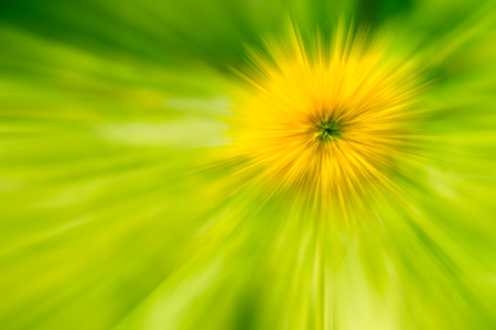 tone: the abstract of yellow, green color tone illustration for background