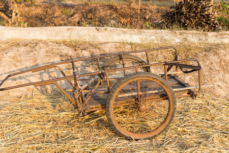 old wood farm wagon: old wooden handcart in rice paddy field