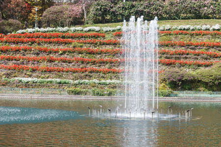 swirling: swirling fountain in the pond beside the flowerbed Stock Photo