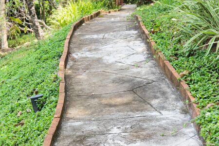 pedestrian walkway: pedestrian walkway near lawn yard in the garden