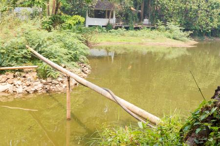 binding: rubber tube binding on bamboo across the lake