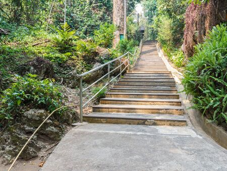 bannister: stairway and bannister in the forest