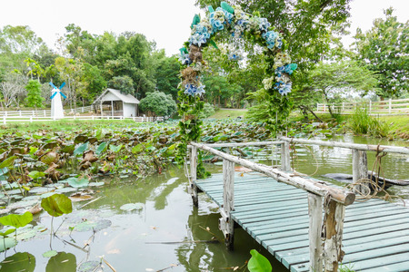 tropical garden: view of the wooden pier decorating with blue flower and buffalo bathing in water lily pond