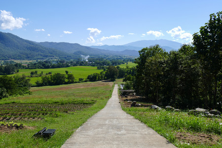 and plot: walkway to the vegetable plot with mountain and paddy view