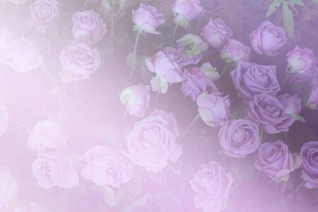 ramo de flores: manojo de floraci�n rosa en el jard�n (filtro de color y enfoque suave)