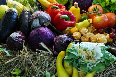 capsicum plant: pile of mix vegetable and fruit still life Stock Photo