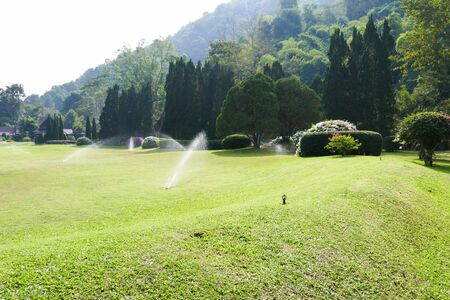 sprinkle system: sprinkler spraying water on lawn yard in the park
