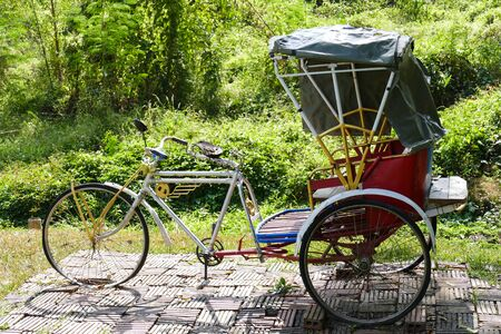 trishaw: thailand traditional rickshaw tricycle in the garden Stock Photo