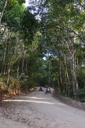 december 21: Chiang Mai, Thailand - December 21, 2015: The tourist drive wooden  rickshaw go down the hill in Monjam in Chiang Mai, Thailand on December 21, 2015. Editorial