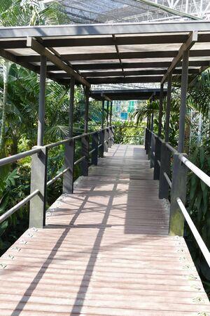 pedestrian bridges: pedestrian walkway in the botanical garden park