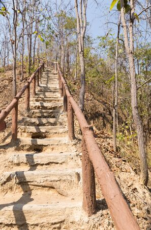 up stair: stair to go up and down the hill in forest in autumn