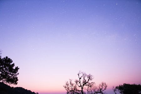 nature silhouette: star with tree silhouette and mountain view at dawn Stock Photo