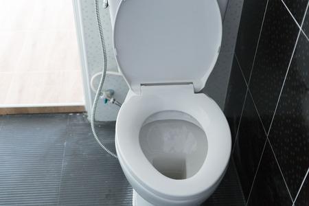 flush: the design of lavatory flush toilet