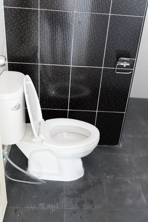 lavatory: the design of lavatory flush toilet