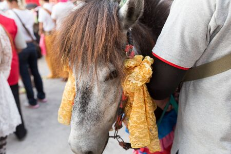 ordination: horse in traditional buddhist monk ordination ceremony at Roy Jun temple in Chiang Mai, Thailand Editorial