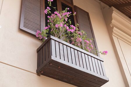tinted glasses: brown wooden window with tinted glass decorating with flowerpot