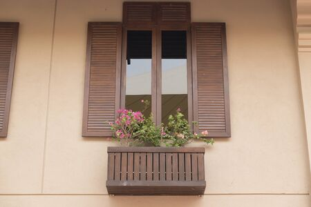 tinted: brown wooden window with tinted glass decorating with flowerpot