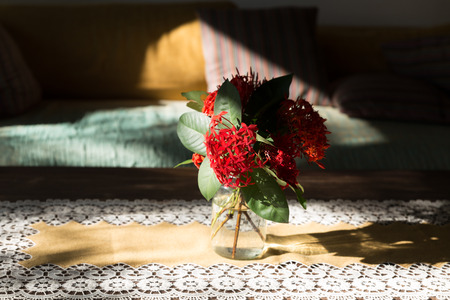 green sofa: red ixora flower in vase on wood table and brown green sofa couch in living room Stock Photo