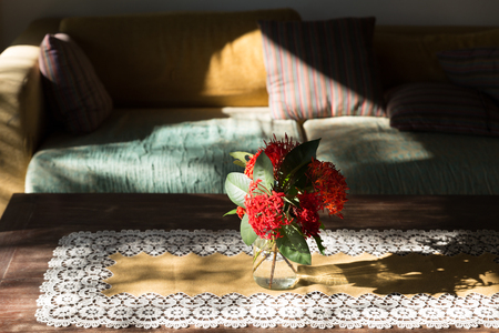 red ixora flower in vase on wood table and brown green sofa couch in living room Stock Photo