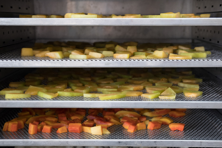 tropical fruit drying in hot air oven. dried cantaloup, mango, carrot on stainless tray