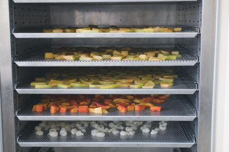 tropical fruit drying in hot air oven. dried cantaloup, mango, carrot, longan on stainless tray Stock Photo