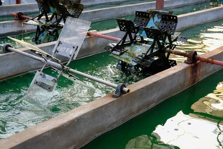 spirulina farm. algae farming for dietary supplement production