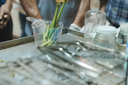 plier knife scissor for plant tissue culture in laboratory
