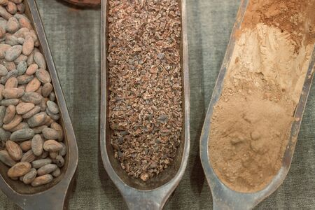 cacao nibs. cocoa bean and chocolate powder Stock Photo