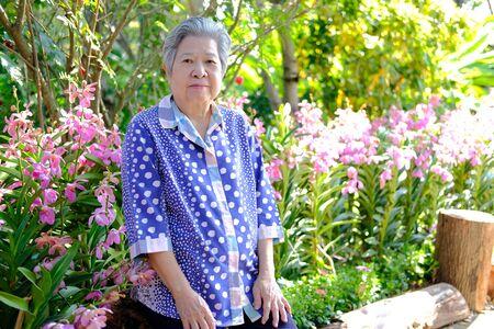 old elder woman resting in garden. asian elderly female relaxing outdoors. senior leisure lifestyle Reklamní fotografie