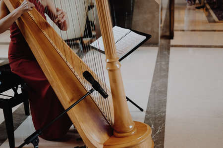 woman harpist player wearing red dress playing harp. classic music instrument