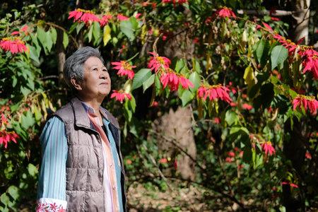 asian old elderly female elder woman resting relaxing in flower garden. senior leisure lifestyle