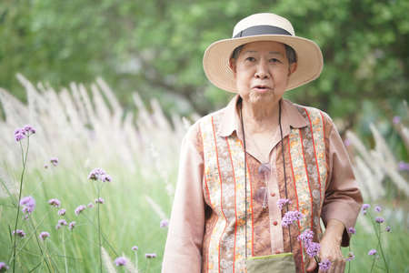 asian old elderly female elder woman resting relaxing in rose flower garden. senior leisure lifestyle Banque d'images