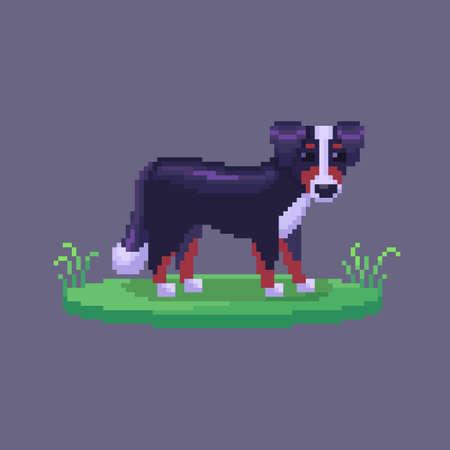 Pixel art dog. Farm animal for game design. Cute vector illustration. 矢量图像
