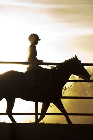 A horse and rider in silhouette behind a fence