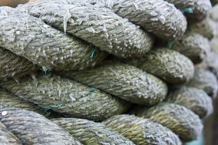 coiled rope: Background image of textured and coiled rope